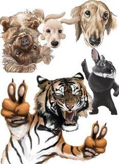動物たち.jpg