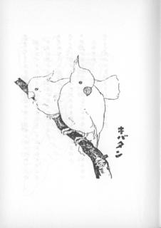 竹下夢二「コドモノスケッチ帖 キバタン」21.png